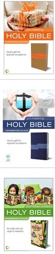 walmart bibles 1