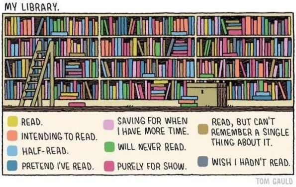 My Library cartoon